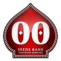 00 Seeds Bank Logo