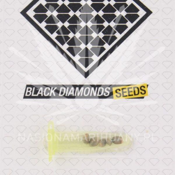 AK 47 Black Diamonds Seeds