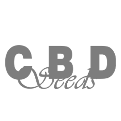CBD Seeds Logo