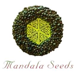 mandala seeds logo