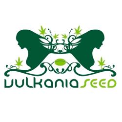 vulkania seeds logo
