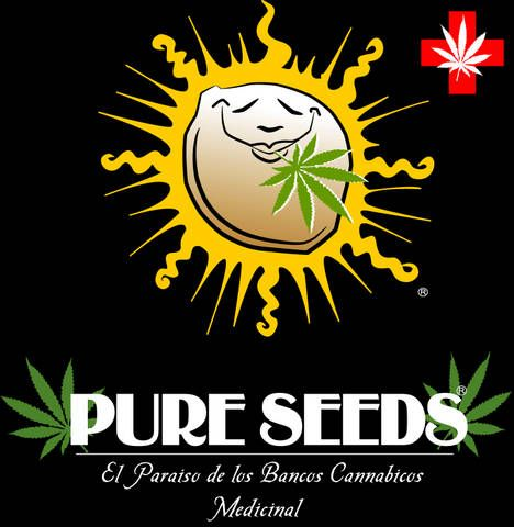 Pure Seeds Collector Auto