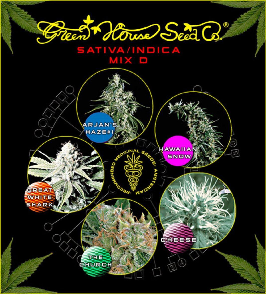 Green House Seeds Sativa/Indica Mix D