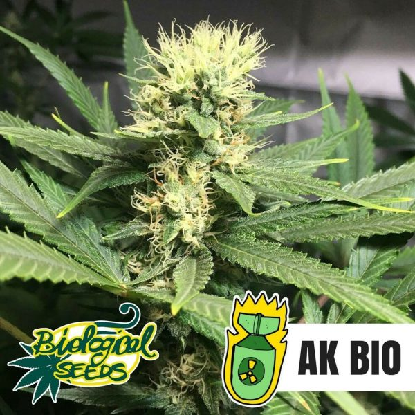 AK-Bio Biological Seeds