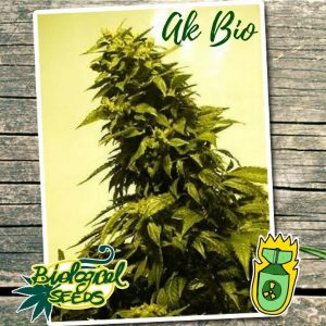 Biological Seeds AK-Bio