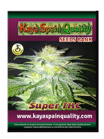 Kaya Spain Quality Super THC