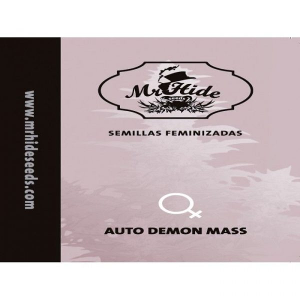 Auto Demon Mass Hiszpania