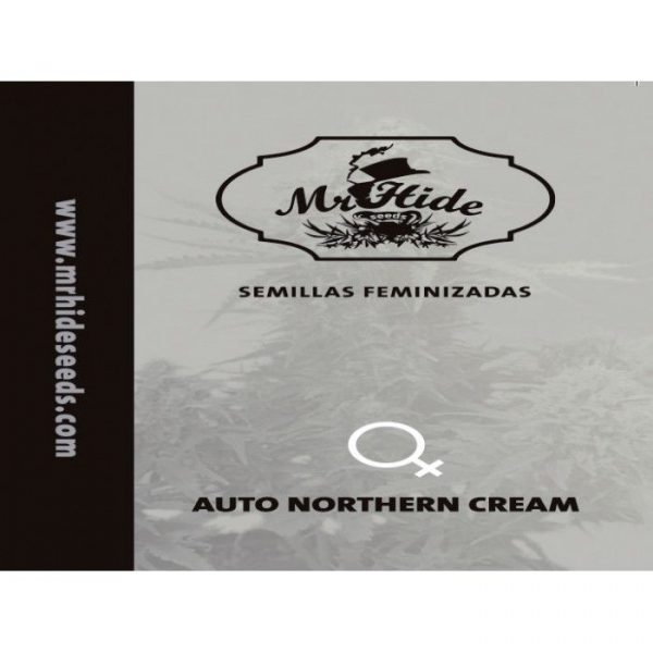 Auto Northern Cream Hiszpania
