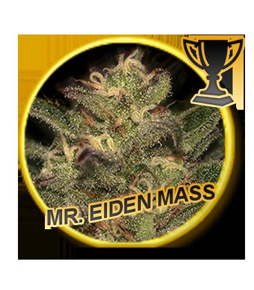 Mr Hide Seeds Mr. Eiden Mass