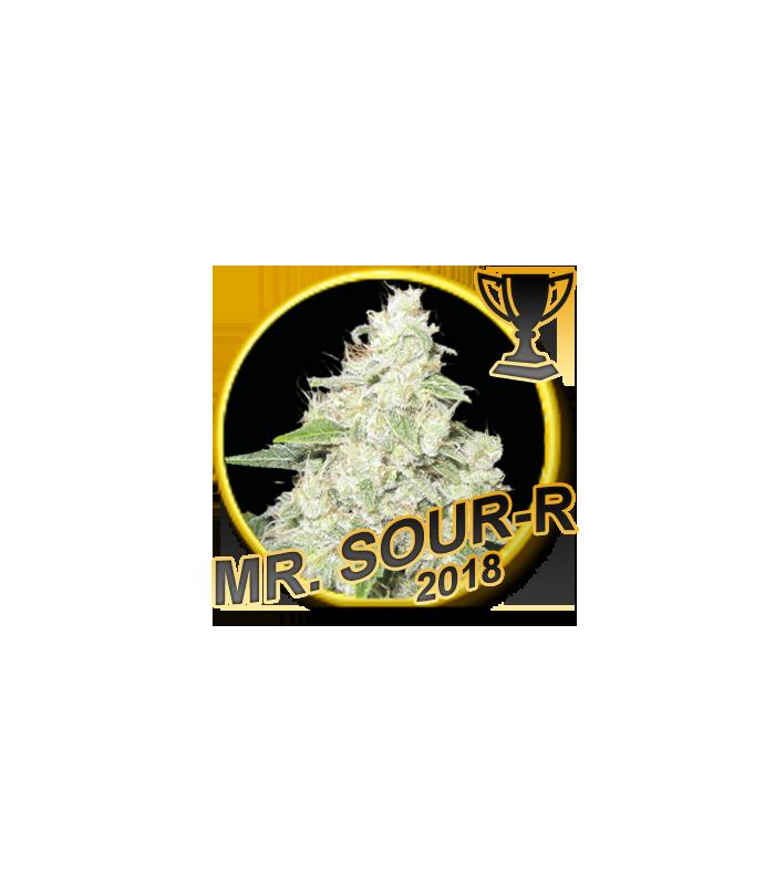Mr Hide Seeds Mr. Sour-r