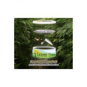 Mystery Seeds Lemon Tree