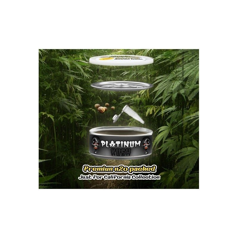 Mystery Seeds Platinum Kush