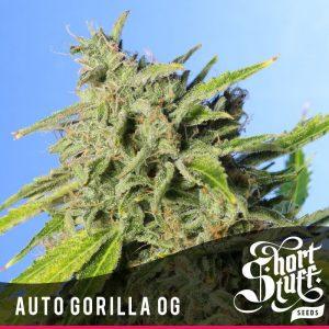 Short Stuff Seedbank Auto Gorilla OG