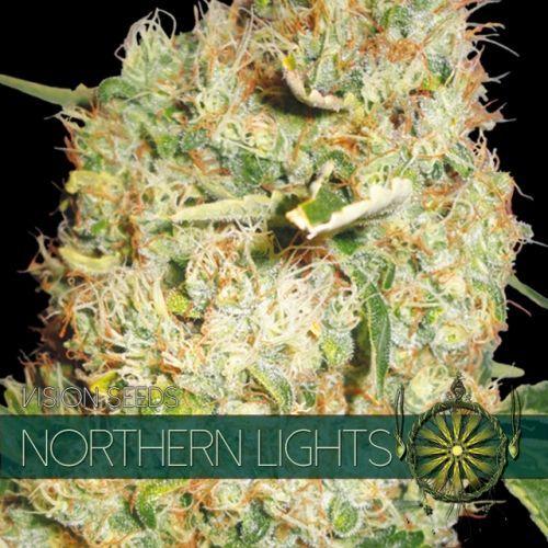 Vision Seeds Northern Lights