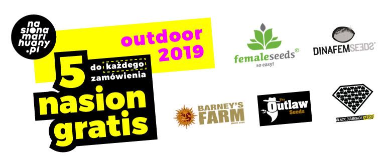 Outdoor promocja 2019 nasiona marihuany
