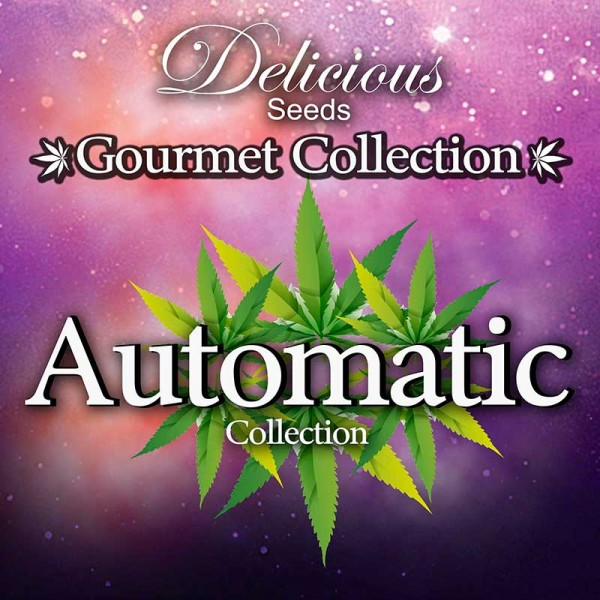 Delicious Seeds Gourmet Collection Automatic strains 2