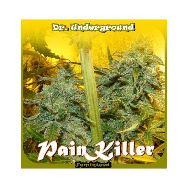 Painkiller Dr. Underground