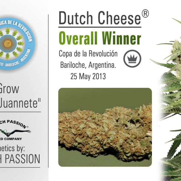 Dutch Cheese Dutch Passion