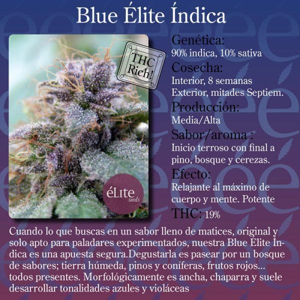 Blue Elite Indica Elite Seeds