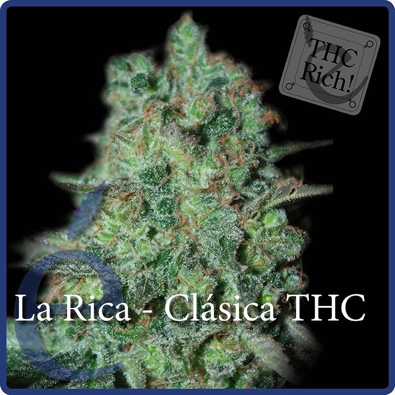 Elite Seeds La Rica Classic THC