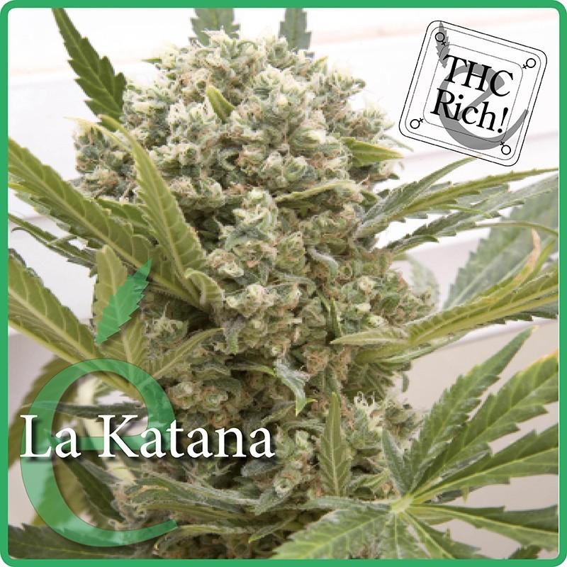 Elite Seeds La Katana