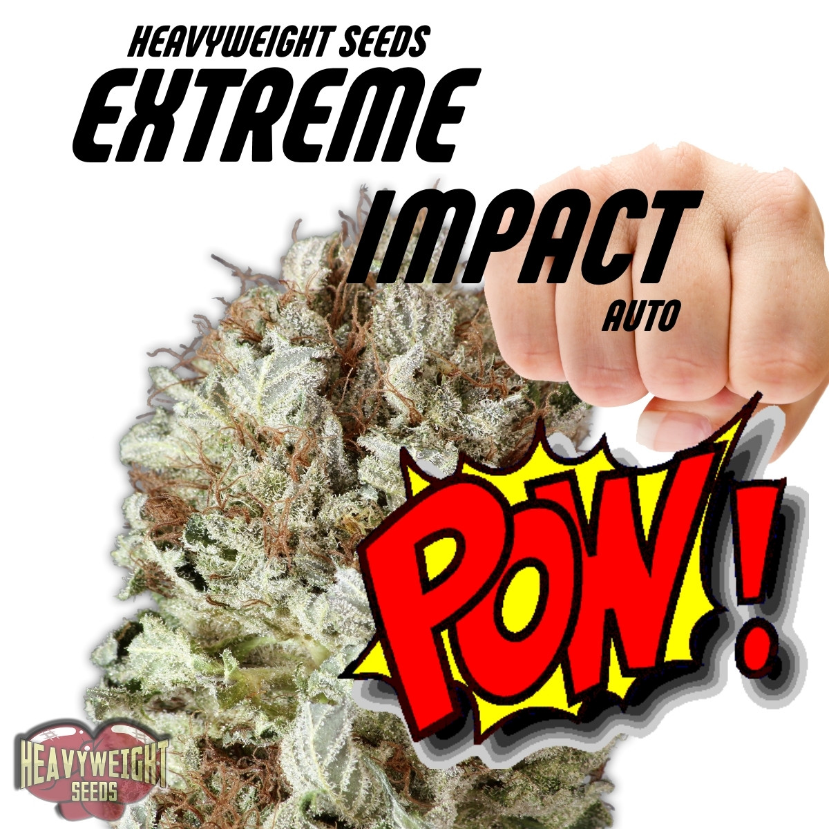 Heavyweight Seeds Extreme Impact Auto
