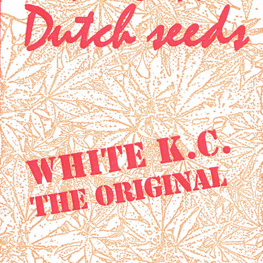 KC Brains White K.C.
