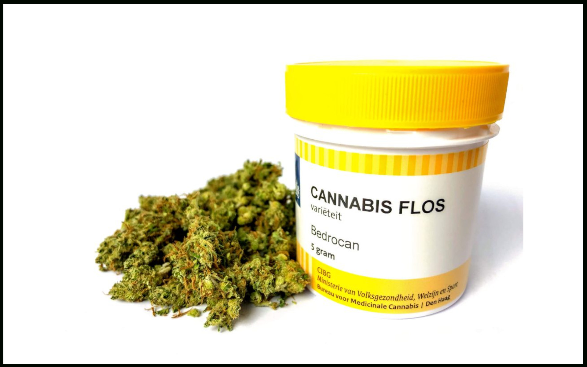 Bedrocan medyczna marihuana