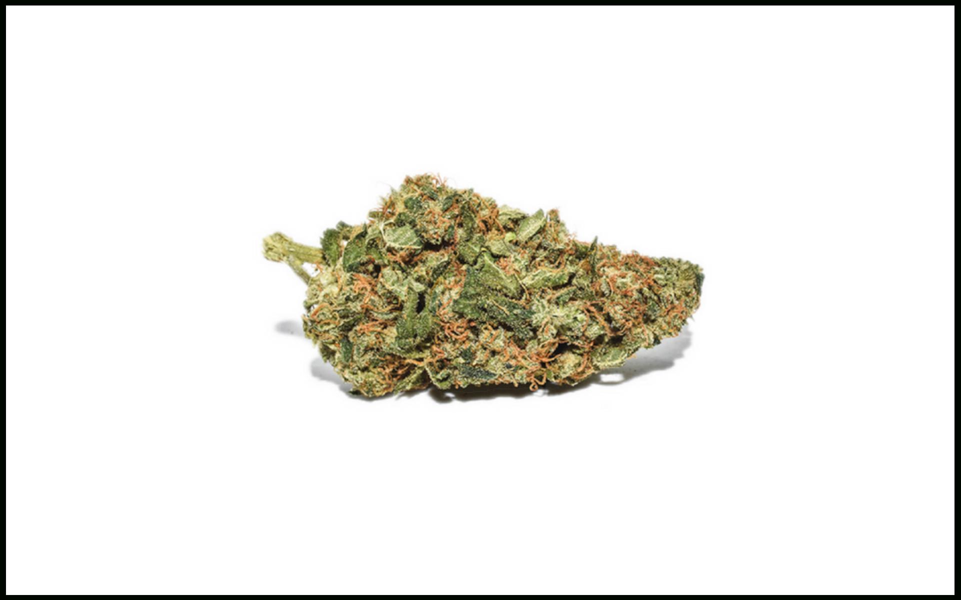 White Widow top marihuany