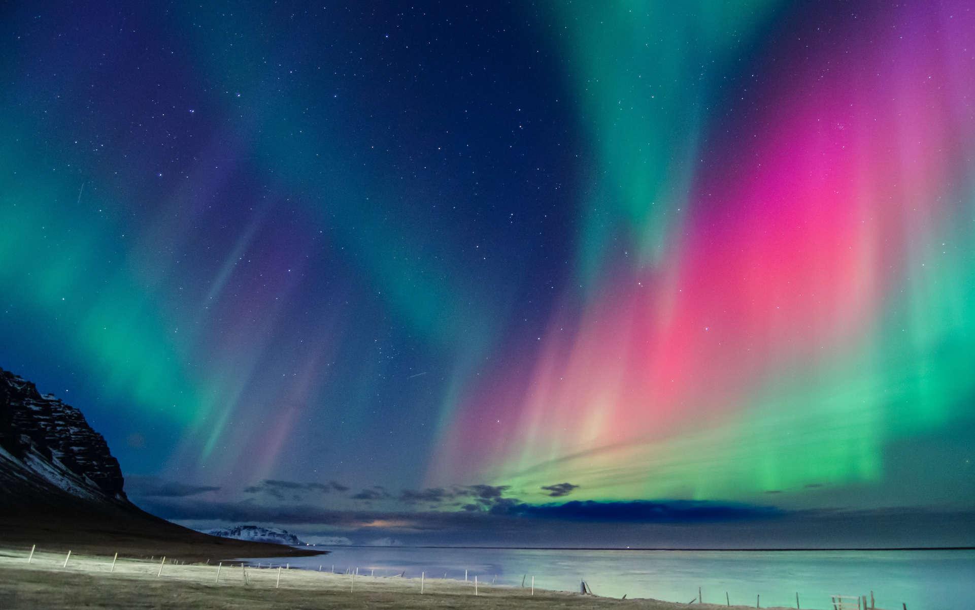 Northern Lights – legendarna odmiana marihuany