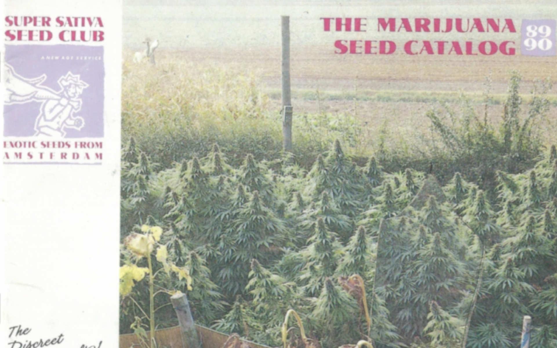 Super Sativa Seed Club katalog