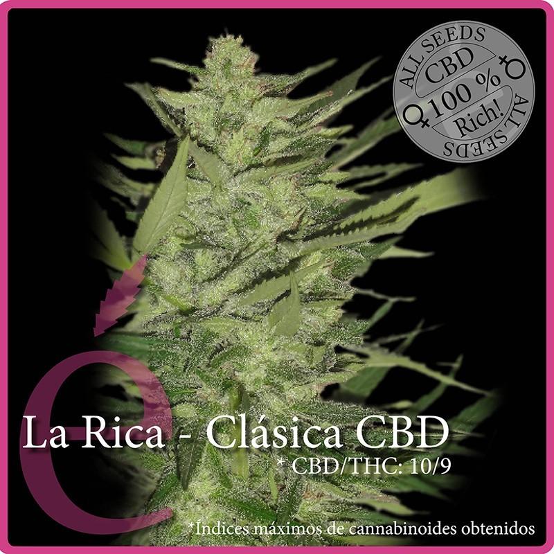 Elite Seeds La Rica  Classic CBD