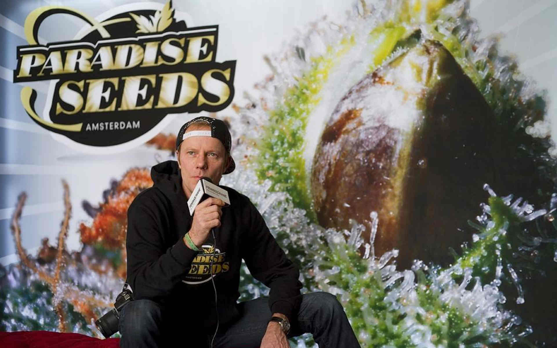 Paradise Seeds – holenderski bank nasion z tradycjami