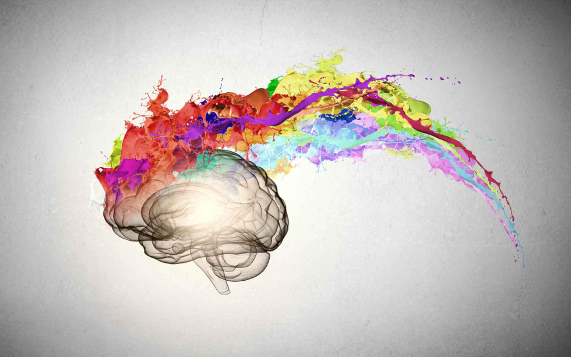 TOP 6 odmian o najbardziej kreatywnym działaniu