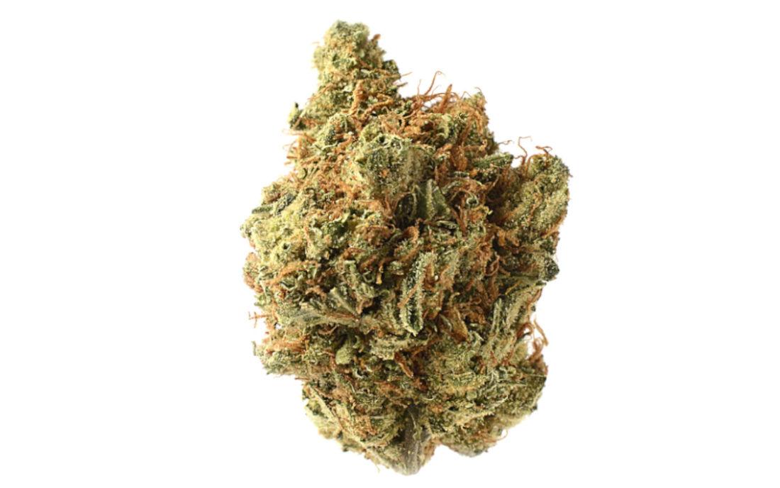 Amnesia Haze zielone topy pełne THC