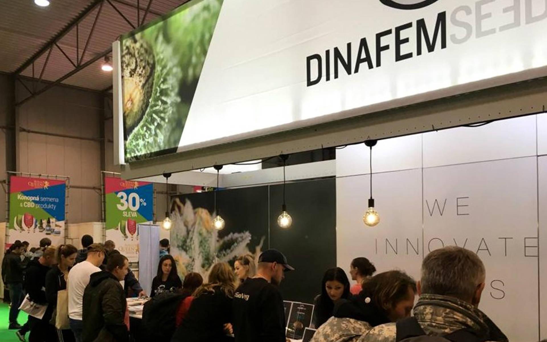 Dinafem – największy seedbank z Hiszpanii