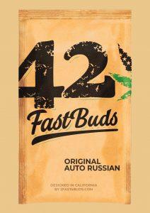 FastBuds Original Auto Russian