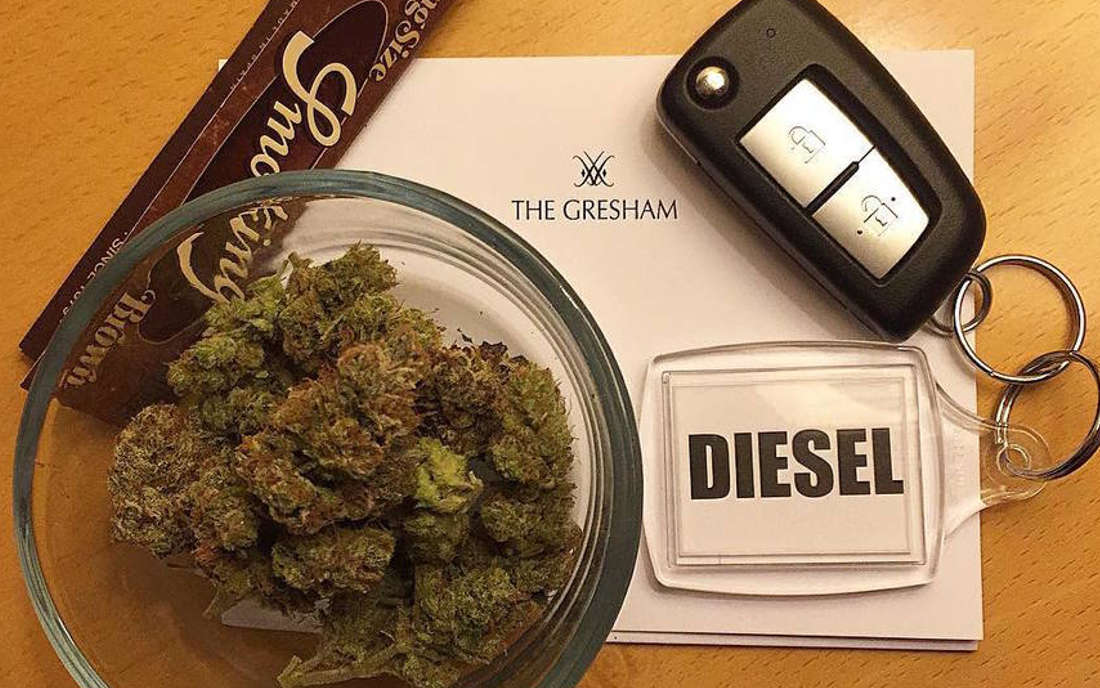 Odmiana marihuany Sour Diesel sklep