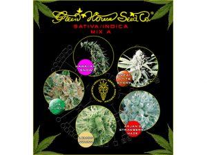 Green House Seeds Mix A