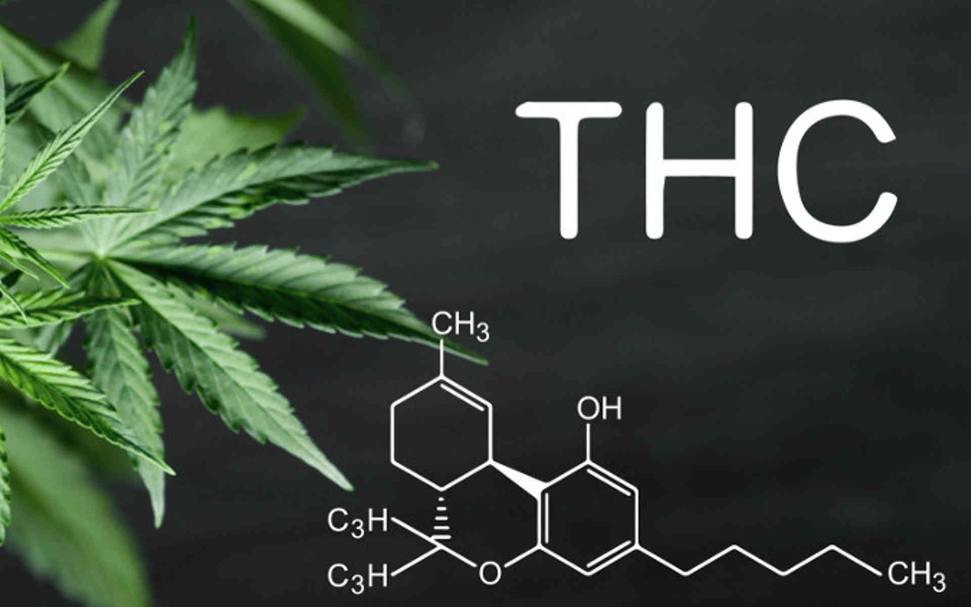 Co to jest THC?