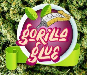 Black Diamonds Seeds Gorilla Glue
