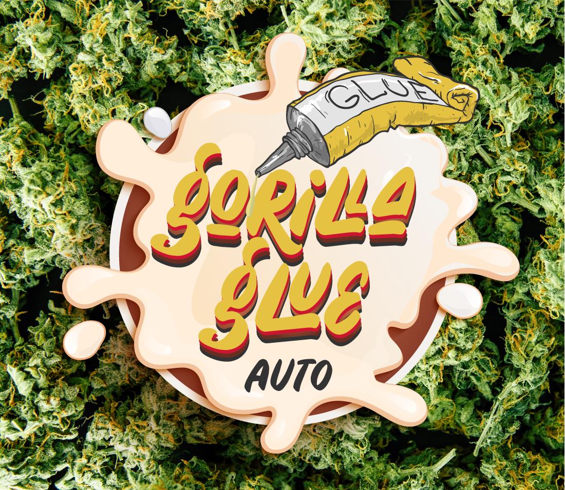 Gorilla Glue Auto