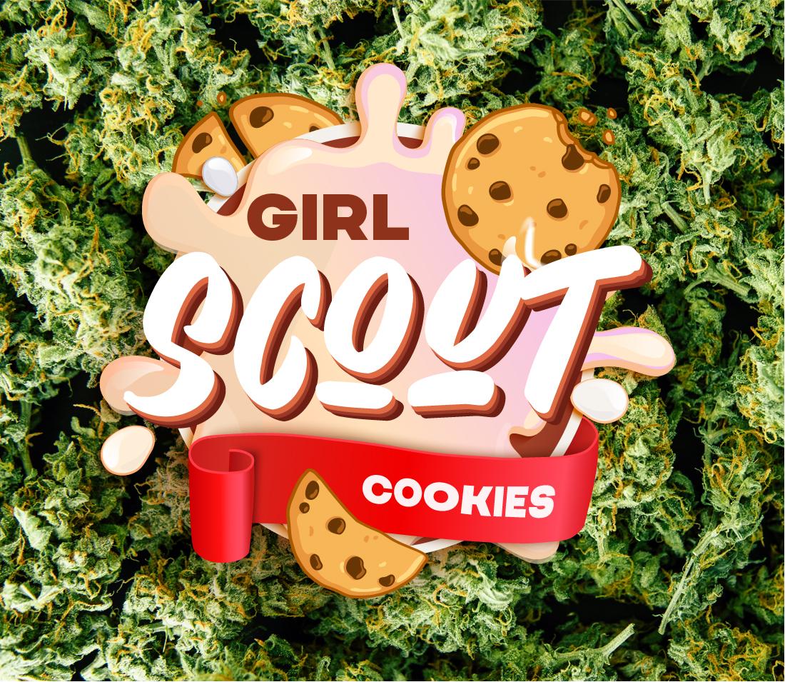 Black Diamonds Seeds Girl Scout Cookies