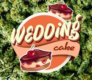 Black Diamonds Seeds Wedding Cake